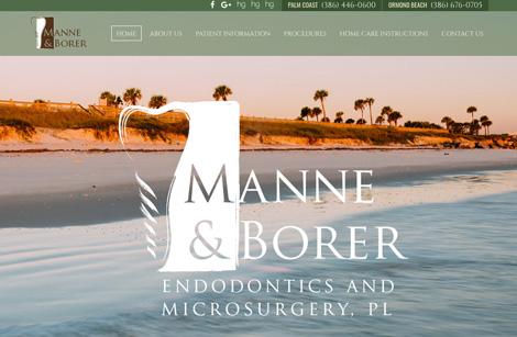 Manne & Borer Endodontics