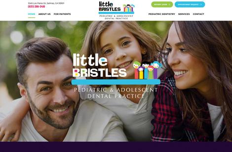 Little Bristles