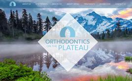 orthoplateau.com